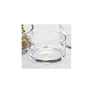 Glasschale, Dekoschale AUTOMATIC H. 7, 5cm D. 13, 5cm rund klar Sandra Rich
