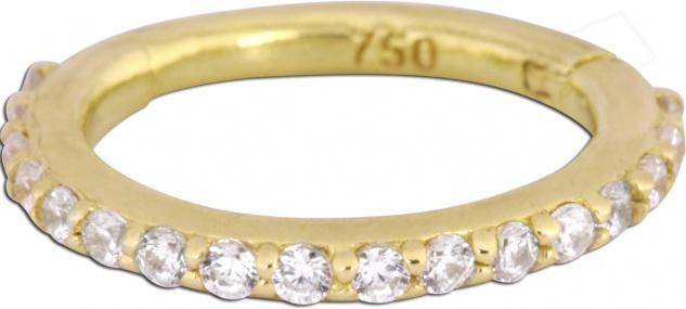 Wildcat Hinged Ring Ohr Piercing Gold 750 unterschiedliche Durchmesser