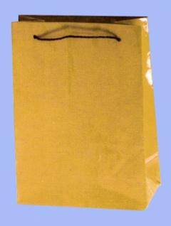 7582 1 breite, goldlackierte Tragetasche, 20x28x10cm, für z. B. Nasc