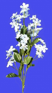 2434 Achilleszweig, in weiß, hellblau und rosa...