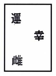 es456040 Tattooschablone Chinese Characters II - Vorschau 1