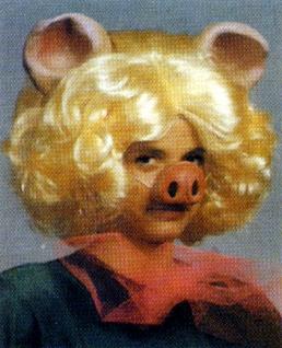 Perücke Felicia Maus mit Ohren Karneval Fasching Fantasy Kitten Haare #5803