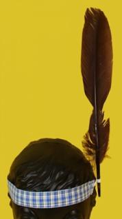 6406 Buntes Indianer Stirnband mit Feder...