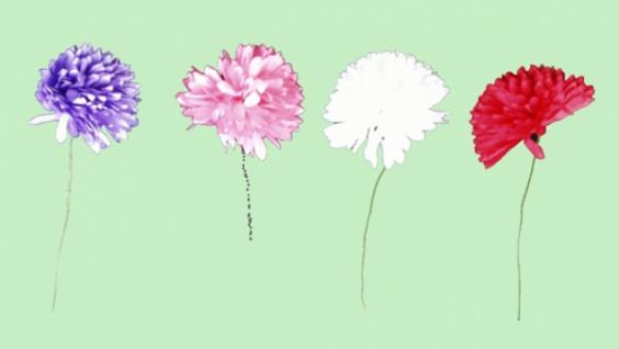 2345  Capp Blume, aus Papier, in weiß, rot, rosa und lila, 6cm breit...