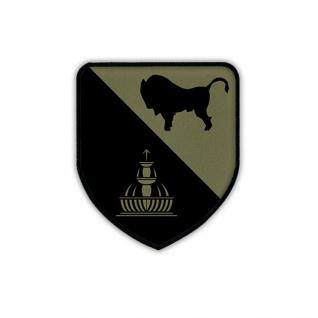 Patch PzBtl 363 TARN Wappen Abzeichen Emblem Panzerbataillon Aufnäher #17986