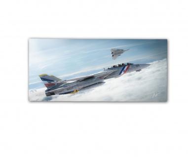 Poster rOEN911 Grumman F-14D VFA-2 Strike Fighter US Navy ab30x14cm#30716