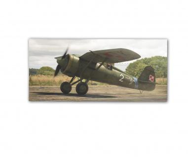Poster rOEN911 PZL P11 Jagdflugzeug Möwenflügeln Schulterdecker ab30x14cm#30711