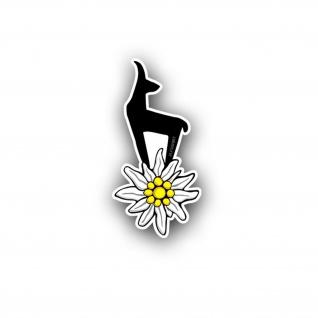 Edelweiß-Gams Bergsteiger Abzeichen Blume Aufkleber Auto 10x5cm #A4502