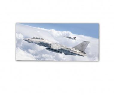 Poster rOEN911 F-14B 162 Tomcat US Navy VF-101 Grim Reapers ab30x14cm#30396