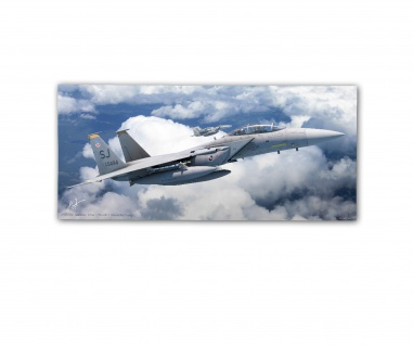 Poster rOEN911 F-15E 89-0494 4th Fighter Squadron USAF Seymour ab30x14cm#30393