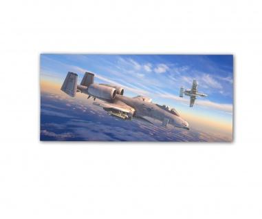 Poster rOEN911 Fairchild A-10 Thunderbolt II AF82 USA Air Force ab30x14cm#30715