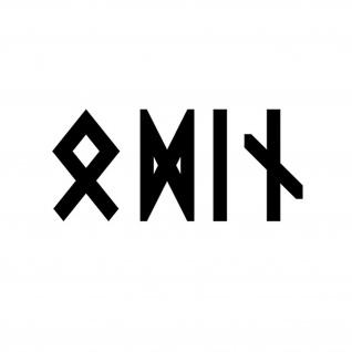 Odin Runen Schrift Sticker Auto-Aufkleber Wikinger Nordmann 10x4cm#A4452