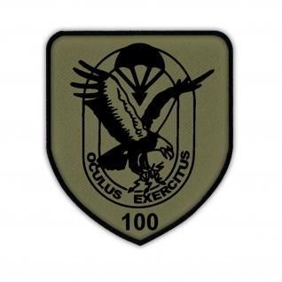 FSK 100 FeSpähKp Fernspähkompanie BW Wappen Abzeichen Fernspäher Aufnäher #17080