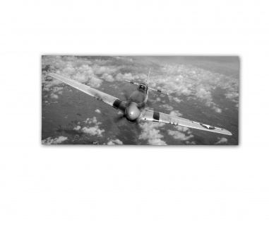 Poster rOEN911 North American P51D Daddy's Girl Jagdflugzeug ab30x14cm#30709