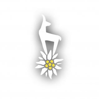 Bergsteiger Gams TYP2 Edelweiss Planze Blume Aufkleber Auto Wappen 10x4cm #A4505