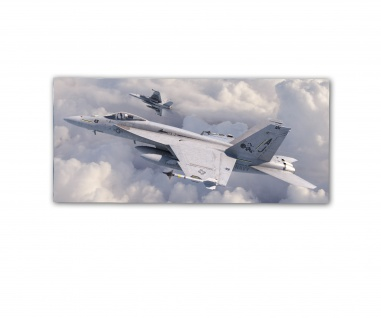 Poster rOEN911 F A-18E AJ 101 Tomcatters Felix Cat US Navy ab30x14cm#30394