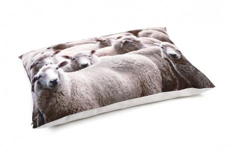 Beeztees Hundekissen Schafe Beige 100x70 1000017