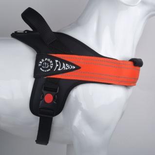 Tre Ponti Geschirr Linea Flash orange verstellbarer Bauchgurt 60 - 75 cm bis ca 10 - 20 kg