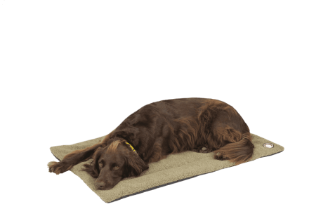 Pet-Joy Products Doggy Wool Blanket Coriander - X.Large 104 x 69