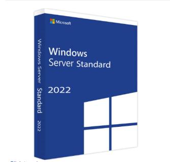 Microsoft Windows Server 2022 Standard