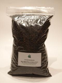 Ekto-Mykorrhiza - die natürliche Düngung für viele Bäume (1 Liter Substrat) - Vorschau 4