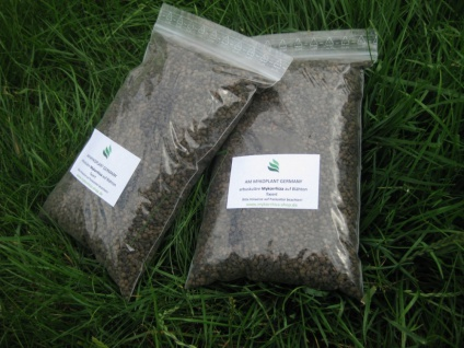 2 Liter Endo-Mykorrhiza - natürliche Düngung für die meisten Pflanzen (2er Set Endo-Mykorrhiza) - Vorschau 4