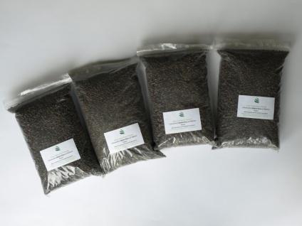 4 Liter Endo-Mykorrhiza (inkl.Transportkosten) - die natürliche Düngung für die meisten Pflanzen (4er Set Endo-Mykorrhiza)