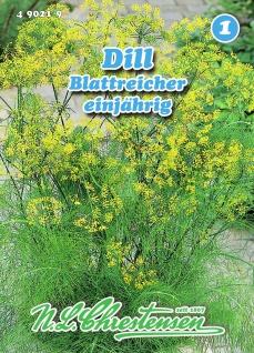 Dill Blattreicher einjährig N. L. Chrestensen Samen Saatgut Kräuter