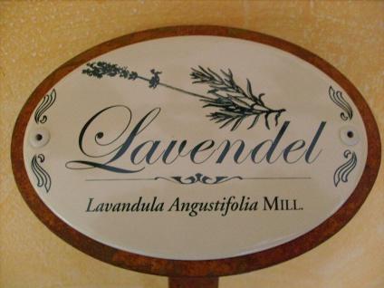 Kräuterschild Kräuterstecker Pflanzschild Emaille Metall Rost Lavendel 30cm
