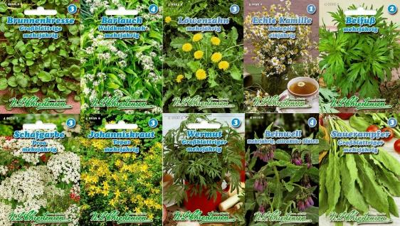 10er Set Wildkräuter Kräuter Saatgut Chrestensen Gewürzkräuter ca. 1800 Samen