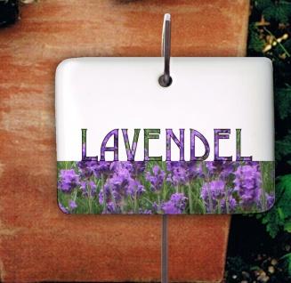 Lavendel Kräuterschild Kräuterstecker Porzellan Etikett frostsicher