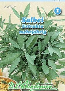Salbei Extrakta mehrjährig N. L. Chrestensen Samen Saatgut Kräuter