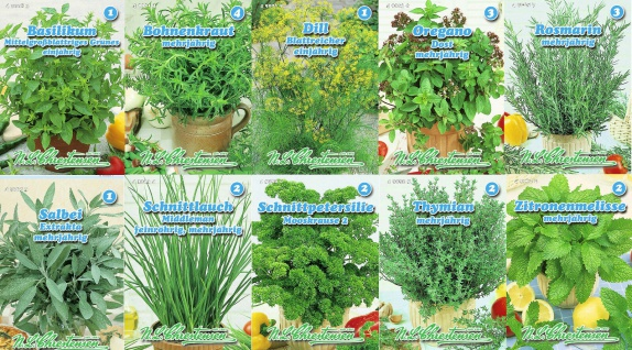 10er Set Küchenkräuter Kräuter Samen Saatgut Chrestensen Gewürzkräuter
