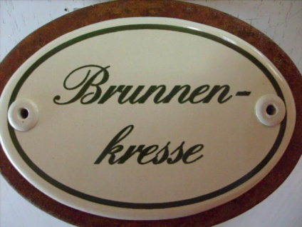 Kräuterschild Kräuterstecker Pflanzschild Emaille Emailschild Brunnenkresse 25cm