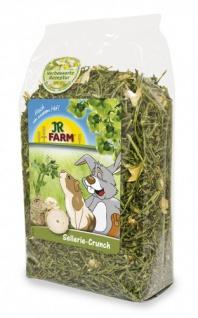 JR Farm Sellerie-Crunch - 200g