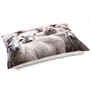 Beeztees Loungekissen Schafe - 100 x 70 cm