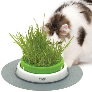 CATIT Senses 2.0 Grastopf - Grass Planter