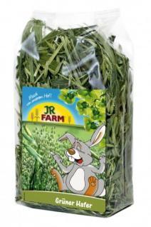 JR Farm Grüner Hafer 100g