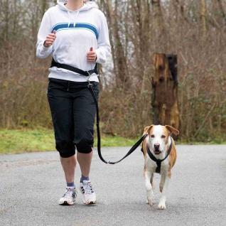Trixie Bauchgurt mit Leine für mittelgroße und große Hunde