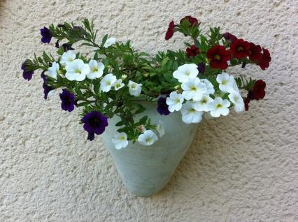 Wandamphore, Wandtopf Blumentopf Blumenkübel Topf Amphore Terrakotta Terracotta