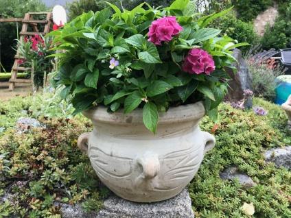 2x Blumentopf 20 cm Terracotta Garten Terrakotta Deko Vase Blumenkübel Übertopf