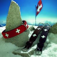 """Halsband """" Swiss"""" (schwarz)"""