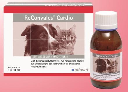 ReConvales Cardio