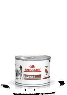 Royal Canin Vet Diet Recovery Feuchtnahrung für Hunde und Katzen (Dose)