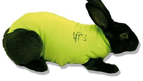 Medical Pet Shirt für Kaninchen