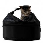 SleepyPod(TM) das portable Haustierbett für Hunde und Katzen