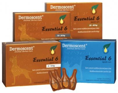 Dermoscent Essential 6 /OP mit 4 Pipetten