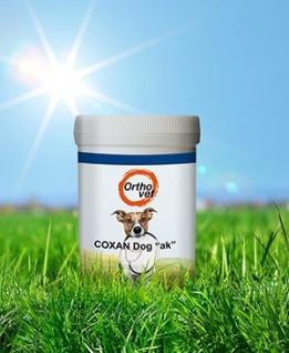 Coxan Dog akut 166 g