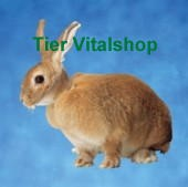 Schutzkragen für Meerschweinchen und Kaninchen