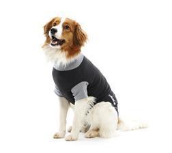 Buster Body Suit für Hunde